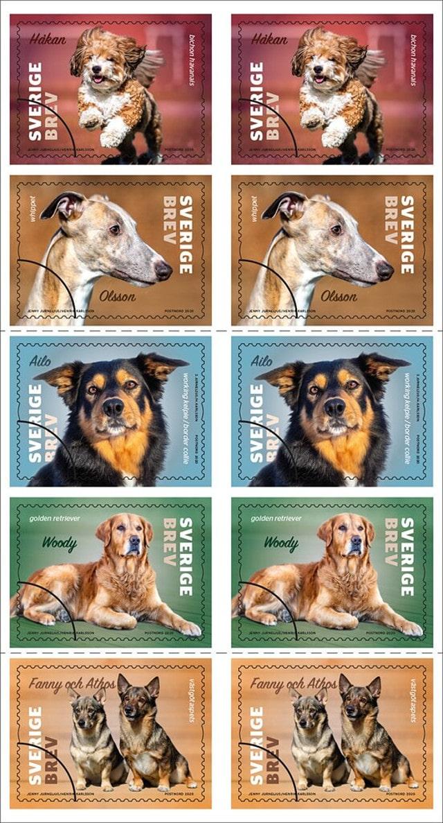 Sweden 2020 dogs stamp