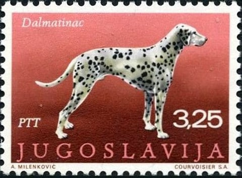 "Stamp Series ""Dogs"""