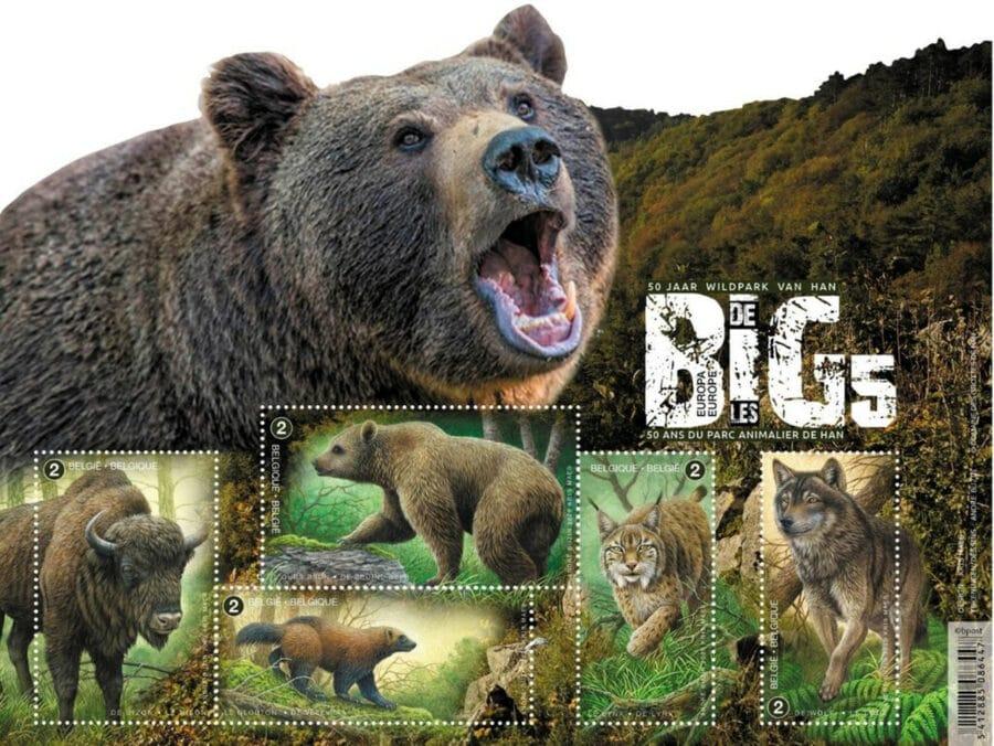 Belgium big 5 stamps