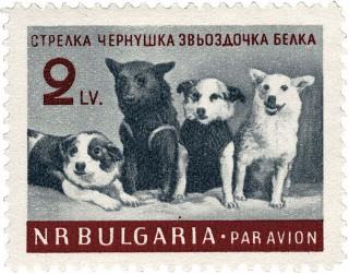 Belka Strelka Bulgaria stamps