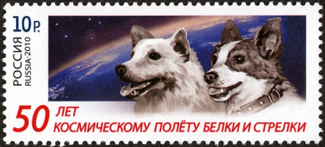 Belka Strelka Russia stamps