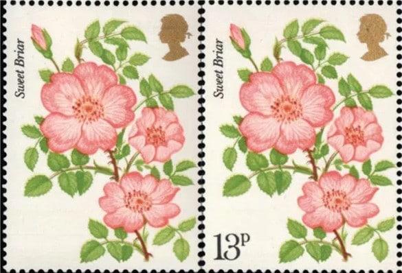 Roses Error Stamp UK
